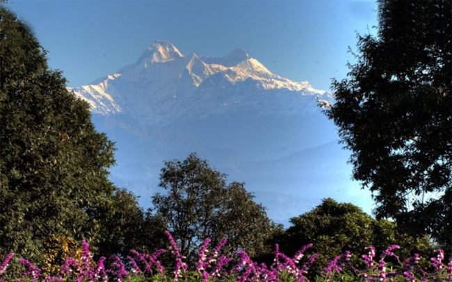 Delhi to nainital-ranikhet-package