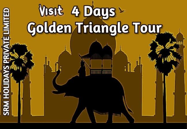 4 Days Golden Triangle Tour by car