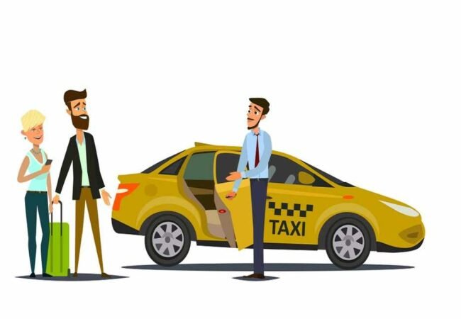 Golden Triangle-tour-Taxi-&-driver